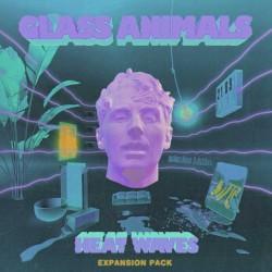 Glass Animals - Heat Waves (Sonny Fodera remix)